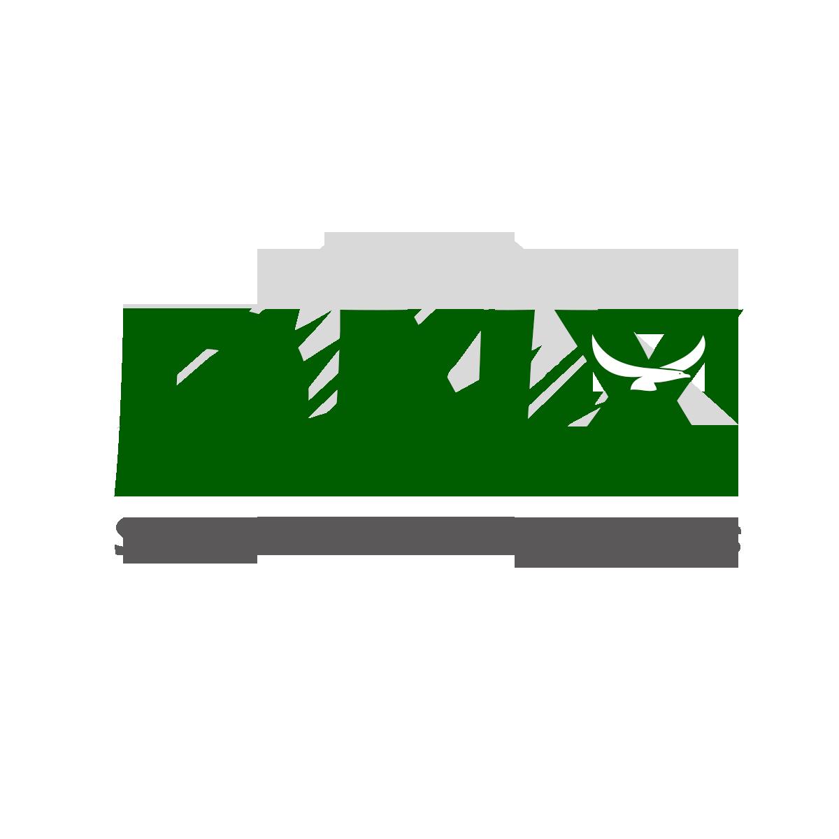DNX Soluções Tecnológicas